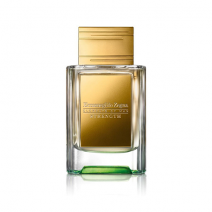 zegna elements of man strenght edp