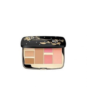 3423478555457 - d&G all in one d&G palette